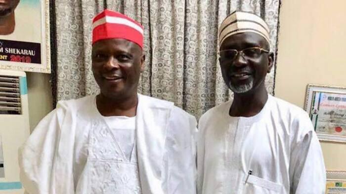 2023: Kano APC crisis deepens as PDP chief Kwankwaso declares interest to work with Shekarau