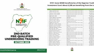 NYIF: 500 MSMEs Beneficiaries of the Nigeria Youth Investment Fund Revealed