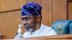 Nigeria witnessing violence associated with war, Gbajabiamila cries out