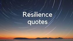 50+ deep resilience quotes to help you overcome any difficulties