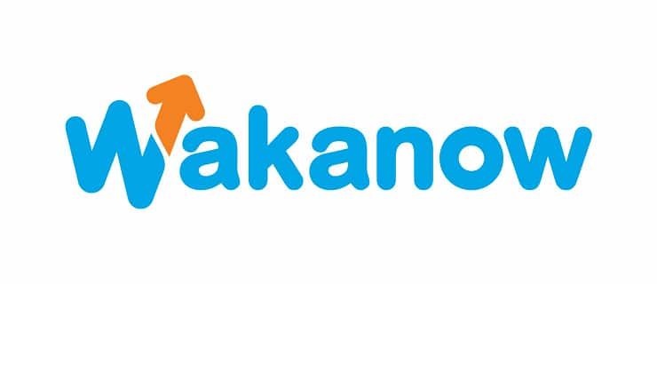 Image result for Wakanow