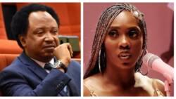 Watching Tiwa Savage's tape can make me faint, Nigerian ex-senator