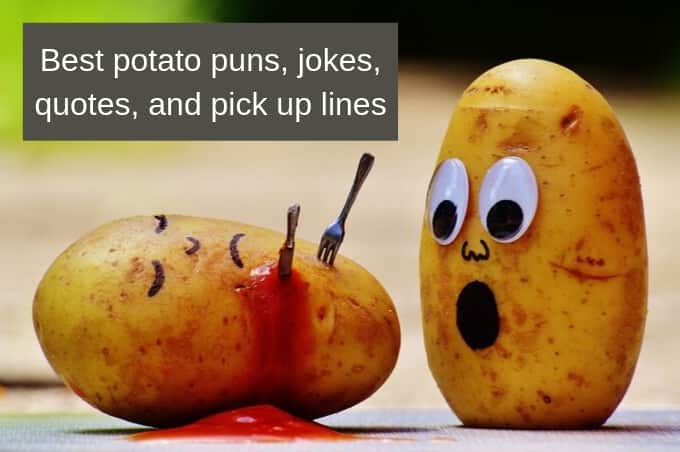The best potato puns, quotes and pick up lines to brighten your mood