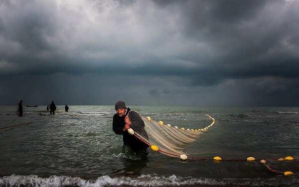 Fishermen cooperative society