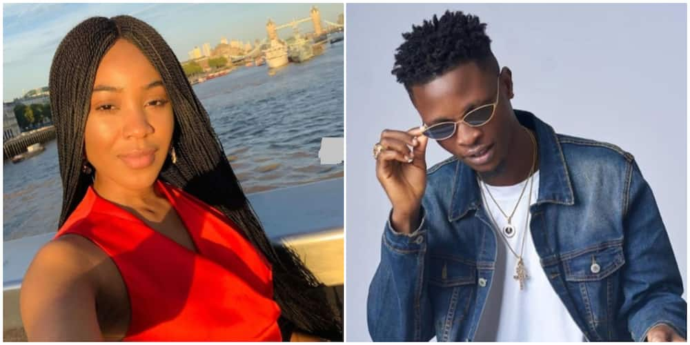 BBNaija: Fans share thoughts on possibility of Erica and Laycon becoming friends again