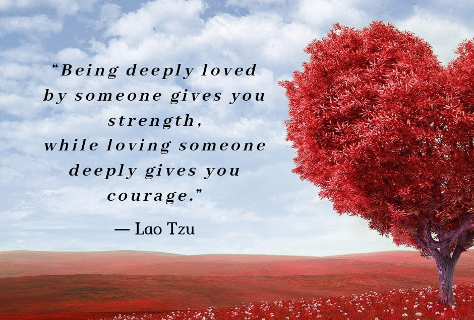 75 love message for my wife ideas from the heart ▷ Legit ng