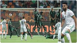 Algerian star names Super Eagles player who should be blamed for his winning goal at AFCON 2019