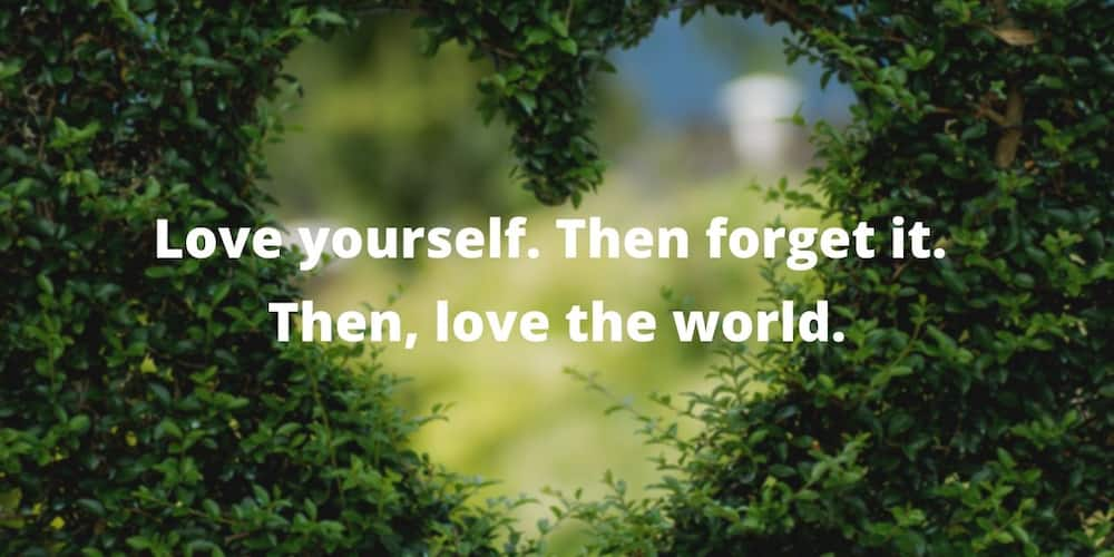 Mary Oliver love quotes