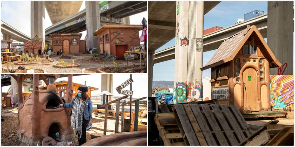 Homeless People Display Rare Creativity by Building Village under Bridge, it Has Clinic Facility