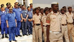 Immigration, Civil Defence job: FG opens portal for online exam (date, other info for candidates)