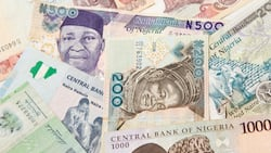 Where to invest money in Nigeria in 2021: Top investment ideas