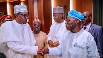 Breaking: Obasanjo meets Buhari at Council of State meeting