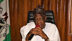 Lai Mohammed says Nigeria is winning the war against insurgency, gives reason