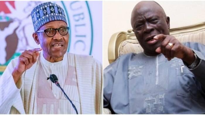 Adebanjo tells Buhari how to engage Igboho, Kanu, other secessionists in Nigeria