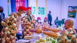 Imo visit: Ohanaeze finally passes verdict on IPOB, tells Buhari Igbo won't leave Nigeria