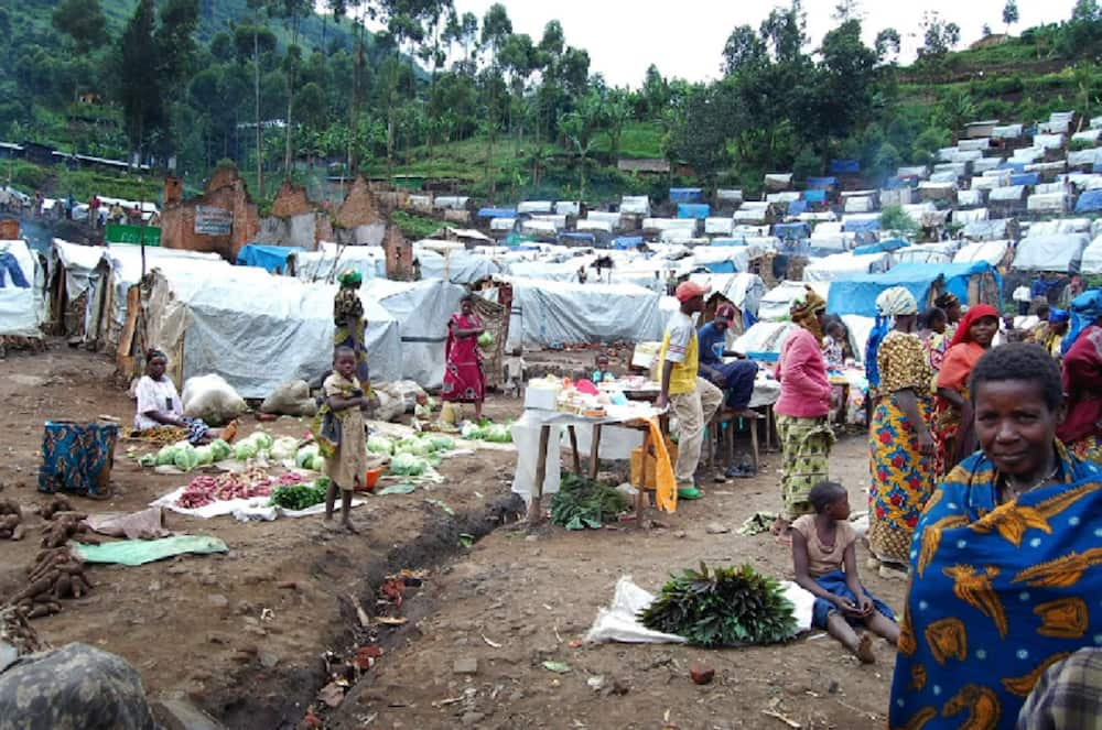 Boko Haram: CSOs commend FG for resettlement of displaced persons
