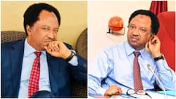 Analysis: 4 things Shehu Sani stands to gain by joining PDP