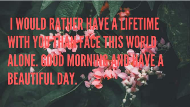 Best good morning my love quotes