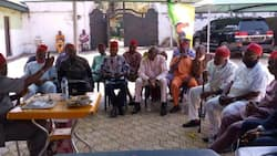 Igbo National Council reacts to IPOB's October 1 sit-at-home order