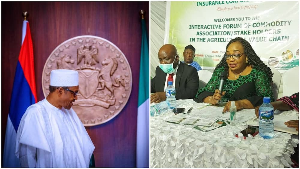 Folashade Joseph: Buhari reappoints MD of NAIC for another term