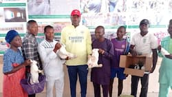 I want to do this for my people - Nigerian lawmaker to empower his constituents with rabbits
