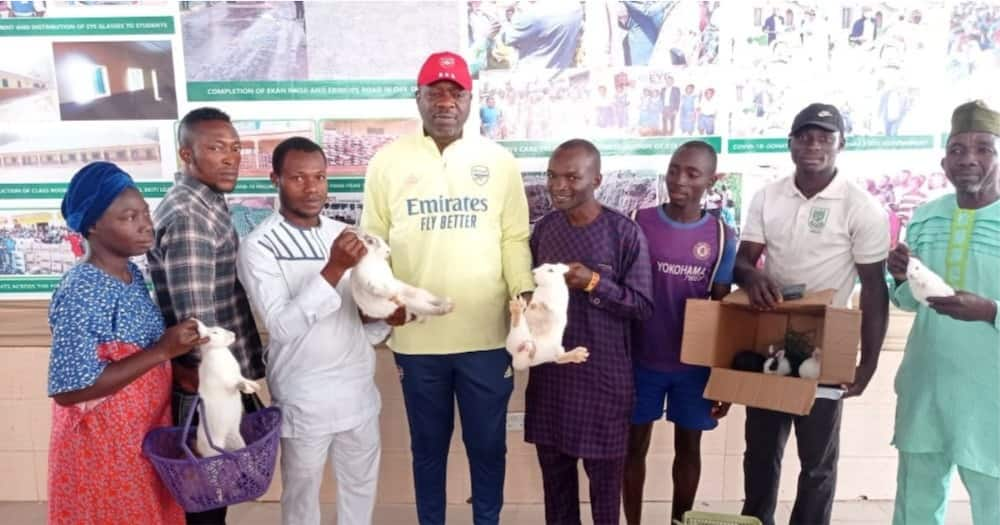 Youth empowerment: Nigerian lawmaker to help constituents with rabbit farming