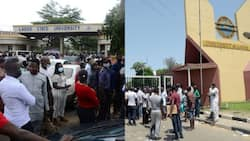 BREAKING: NANS suspends planned June 12 nationwide protests