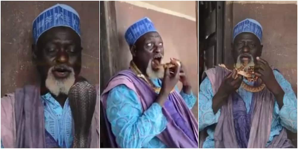 71-Year-Old Snake Charmer Wows Crowds In Lagos