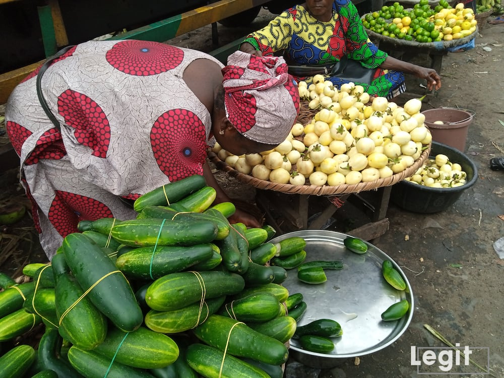 The supply of garden egg at the market is large and the cost price reasonable, sellers' informed. Photo credit: Esther Odili