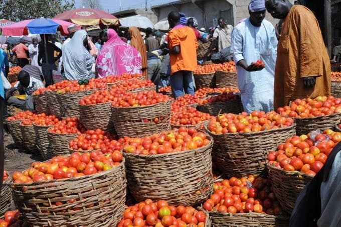 Nigerian families groan as prices of onions, tomatoes soar