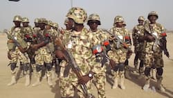 Operation Whirl Stroke: Tiv council commends FG on military operation