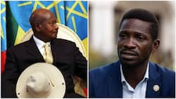 BREAKING: Winner of Uganda's presidential election declared