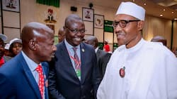 Presidency reportedly launches fresh plot to sack Magu as EFCC boss