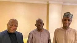 OPINION: How jitters of Yari-Tinubu connections brew lies and mischief by Ibrahim Madugu
