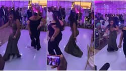 """2 cute ladies of different sizes """"scatter"""" dancefloors with amazing legwork, leave guests screaming"""