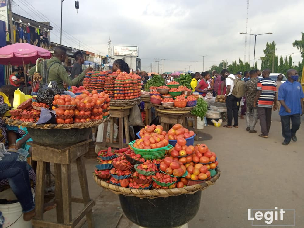 The cost price of tomato dropped while that of onion remains the same. Photo credit: Esther Odili