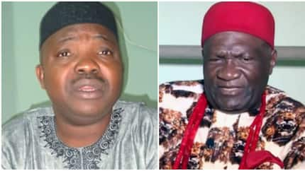 Presidential system has killed Nigeria - Ohanaeze, Afenifere declare support for lawmakers move to return to parliamentary govt