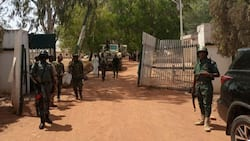 Bandits abduct students, lecturers in Nuhu Bamali polytechnic in Kaduna