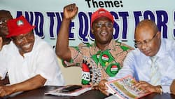 Just in: FG's advisory committee not relevant to minimum wage deal - NLC