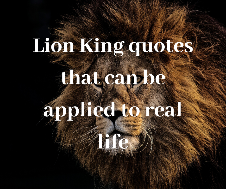 35 Enlightening Lion King Quotes That Can Be Applied To Real Life Legit Ng