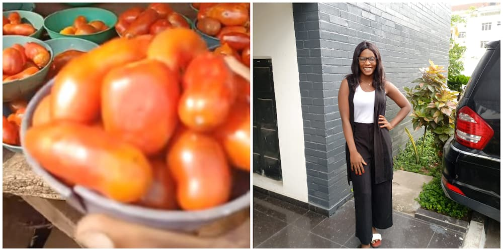Reactions as lady shows off tomatoes being sold for N100 on street, video generates reactions