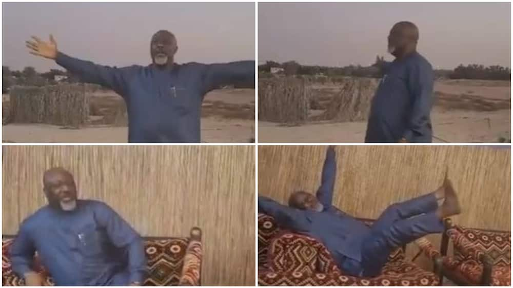 Dino Melaye excited as he visits farm in Dubai (video)