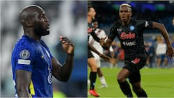 Bologna manager makes huge claims about Osimhen and Lukaku that will get Chelsea fans upset