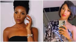 It was savagery at its best: Legit readers react to Tiwa Savage and Seyi Shay's clash