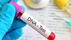 Bidiyo: Dan ka ne kuma ba zan taba yin gwajin DNA ba, Matar aure ga mijinta