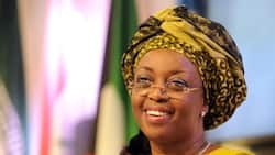 EFCC gives update on Diezani's extradition after former minister reportedly acquired Dominica's citizenship, got big appointment