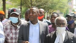 Reactions as activist accuses Omoyele Sowore of applying for grant in her name without consent