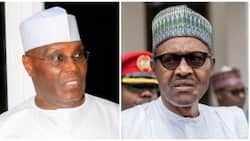 Atiku is rich to himself, an average poor person in northeast does not know him - Ndume