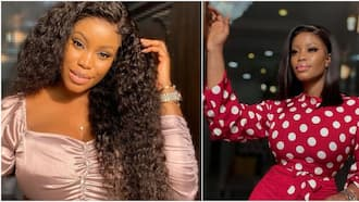 Fake it till you make it: Eriata Ese advises as friend loses multimillion naira deal to lack of 'packaging'