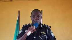 Ban on open grazing: Police reveal those behind threats to attack Delta state